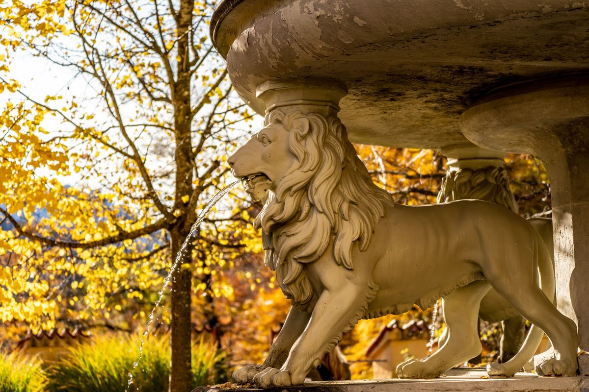 The lion fountain